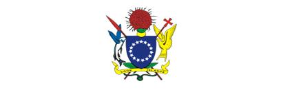 CIGOV emblem
