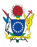 CI Govt